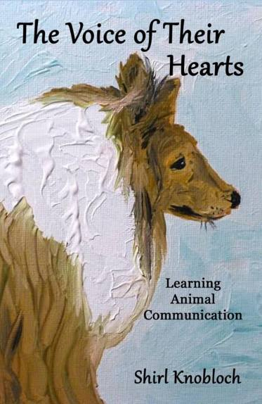 book-cover-voices-of-their-hearts